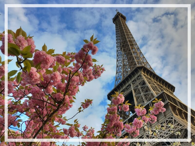 25 PICTURE PERFECT REASONS TO VISIT PARIS