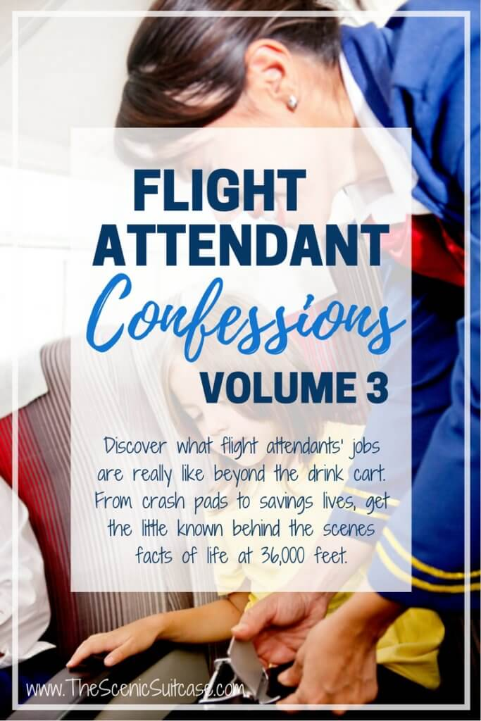FLIGHT ATTENDANT Confessions