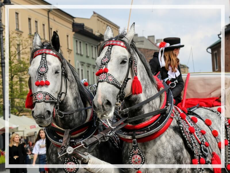 A horse drawn carriage ride through the main market square. Just one of the many reasons to visit Krakow, Poland.