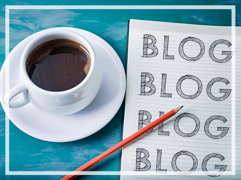 Discover the things every new blogger needs to know that no one is talking about. Legal pitfalls, little known secrets, and how to make your blog a success! And for more blogging advice, follow The Scenic Suitcase on Pinterest!